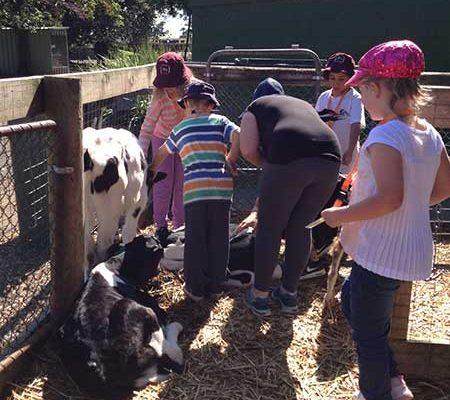 A trip to Chesterfield Farm