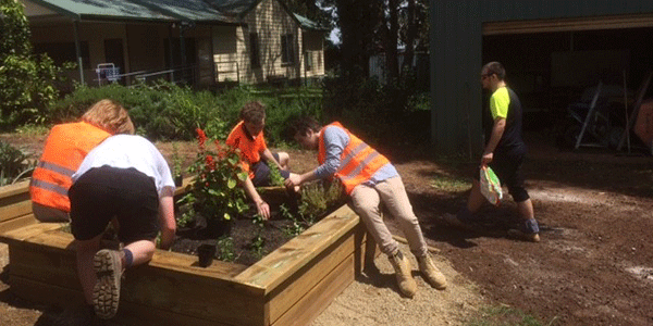 Applied Learning - Cire students working on Silvan Primary School's community garden