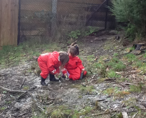 Image of the Bush Kinder children planting shrubs