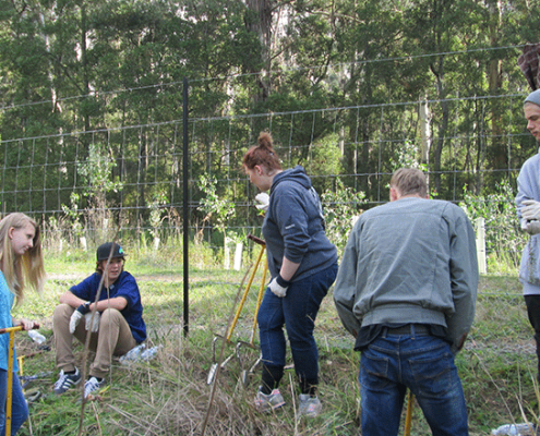 VCAL visit to Yellingbo Conservation Reserve