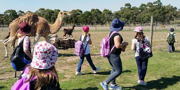 Cire Children's Services vacation care - Chesterfield Farm