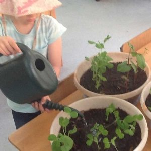 Children's Services - sustainability