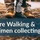 Nature Walk and Specimen