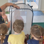 Children captivated by butterfly project